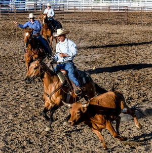 A team of competitors chase down steers to demonstrate their ranch work skills Friday at the Finney County Fairgrounds rodeo arena during the annual Beef Empire Days' Commerce Bank Ranch Rodeo.