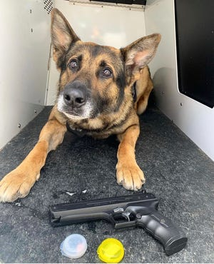 A Ventura police dog helped recover a replica firearm after an apparent road rage incident on Sunday.