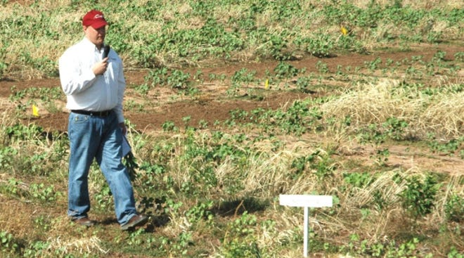 The use of cover crops is one of the land management methods for replenishing carbon in the soil. (Texas A&M AgriLife photo by Kay Ledbetter)
