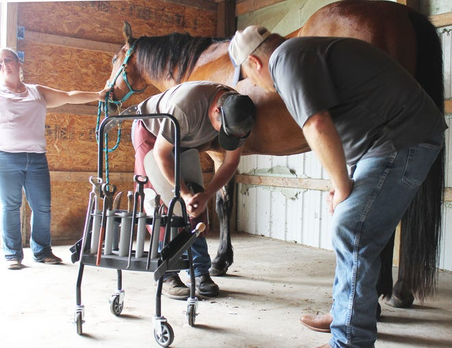 Jason Spieth of Michigan Horseshoeing Institute of Litchfield looks on as his apprentice, Josh Ewers of Coldwater, corrects an improperly shoed horse.