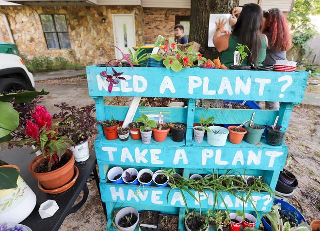 Hannah Mitchell has opened a plant library on McFarlan Avenue in Fort Walton Beach. Operating on the honor system, people can take plants and gardening supplies, and leave the same at the open-air stand.