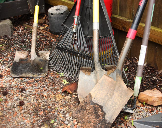 Before you grab a shovel or other gardening tool to deal with a snake, consider the pests the snake helps control around your home.