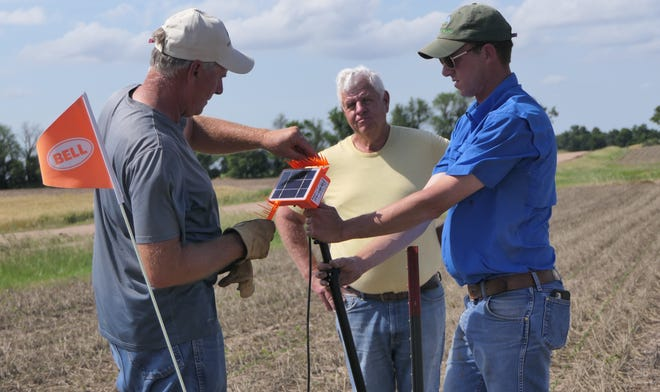 Shane New (L) and David Kleinschmidt (R)  of Understanding Ag place a soil probe on June 7 in Larry Reichenberger's (C) soybean field in central Kansas.