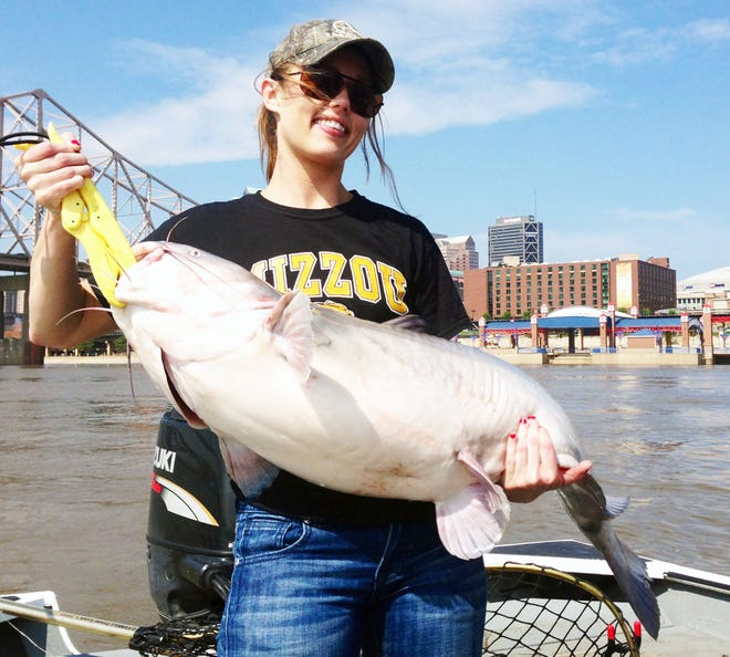 Large catfish from big river is a summer fishing favorite.