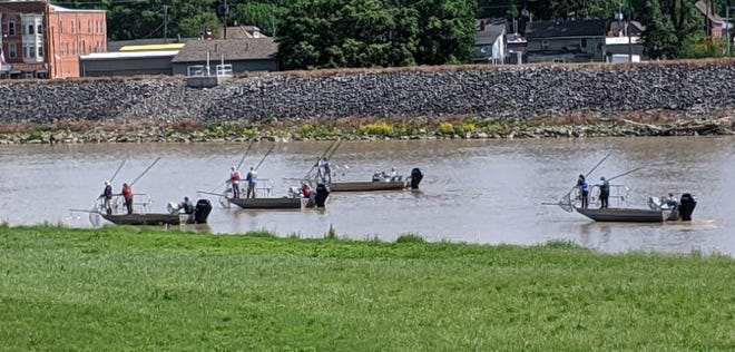 Agents from the Ohio Department of Natural Resources search for Asian Carp, an invasive species that can disrupt the habitat and food supplies of native fish, in the Sandusky River on Wednesday.