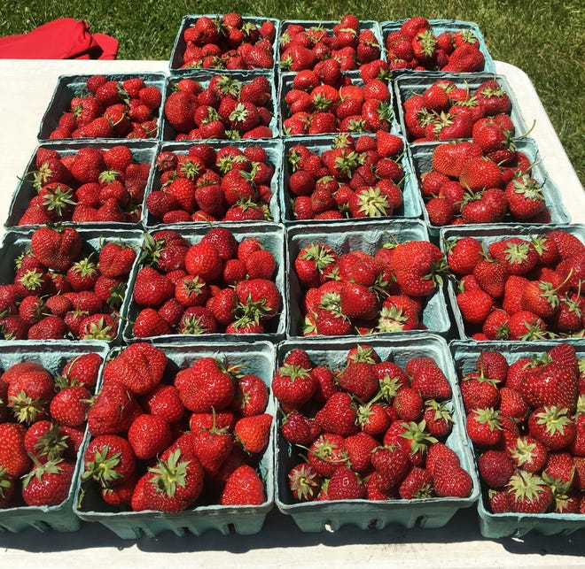Strawberries at one of the vendor stands at the farmers market held every Wednesday on the grounds of the Settlement Shops in Fish Creek.