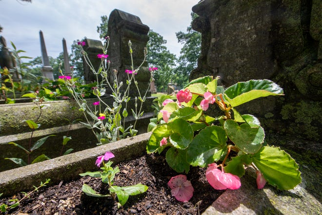 Maturing cradle grave gardens are shown at Prospect Hill Cemetery and Cremation Gardens in June 2021. This form of decorating graves was popular in the late 19th century.
