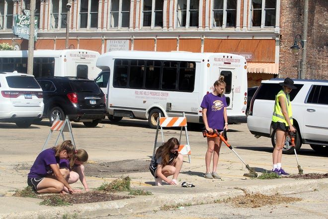 Lancy Holland, from left, Alaina Dinderman, Bailey Jordan, Leah Baker, and Whitney Sullivan represent the Orangeville High School Girls Basketball team as they weed a parking lot on Wednesday, June 9, 2021, in downtown Freeport.