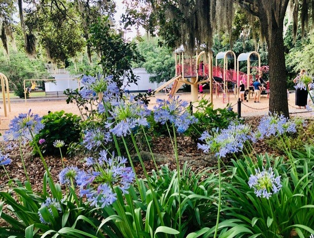 Forsyth Park, the city's first recreational park, which dates back to the 1840s, is pretty perfect as is. It's lovely, kid friendly and great for strolling. It doesn't need a lot of tweaking, writes columnist Tommy Barton.
