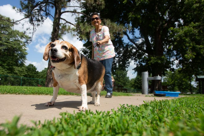 Eden Johnson walks with her pup Mabel out of the small dog area of the Hill's Bark Park. Thanks to a $175,000 donation from Hill's Pet Nutrition, the park will soon be doubling its size and improving facilities.