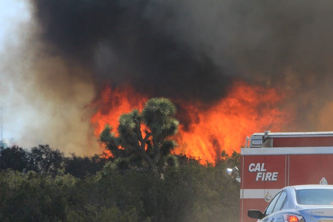 Flames erupt behind a Cal Fire truck during the Farm Fire on Wednesday, June 9, 2021. Firefighters were able to hold the blaze to 250 acres with no damage to nearby homes reported.