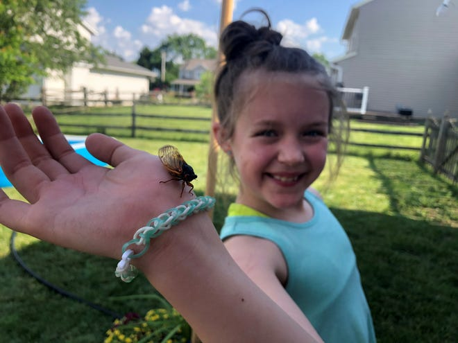 Millie Staudt, 9, holding a cicada.