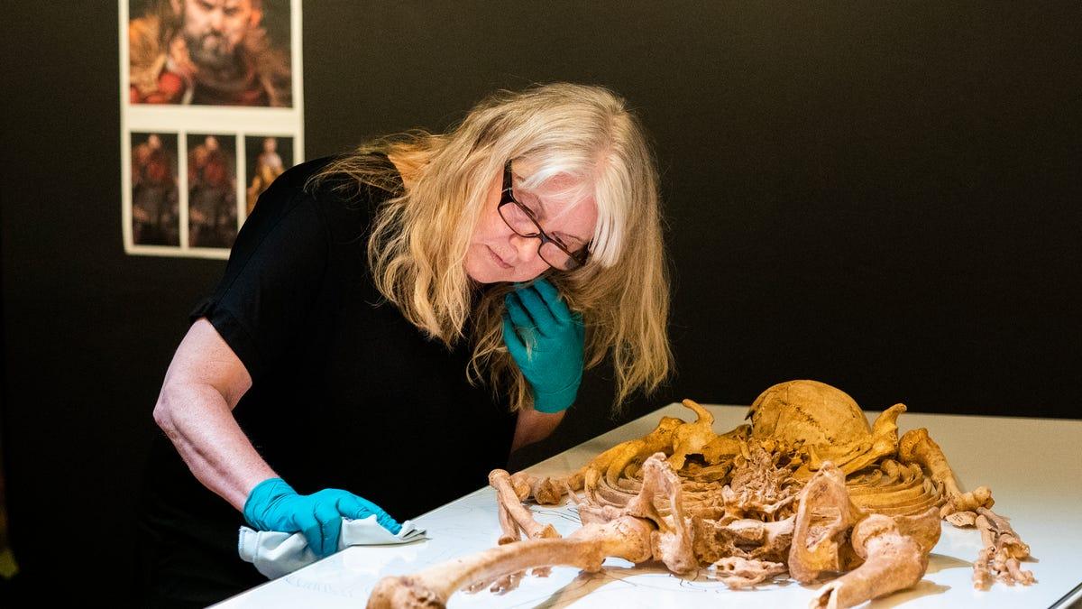 Skeletons of related Viking-era men to reunite for exhibit 3