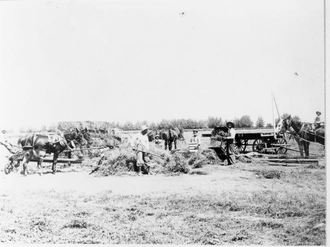 Farmers tend to the land in Blackdom, New Mexico in this undated photo.