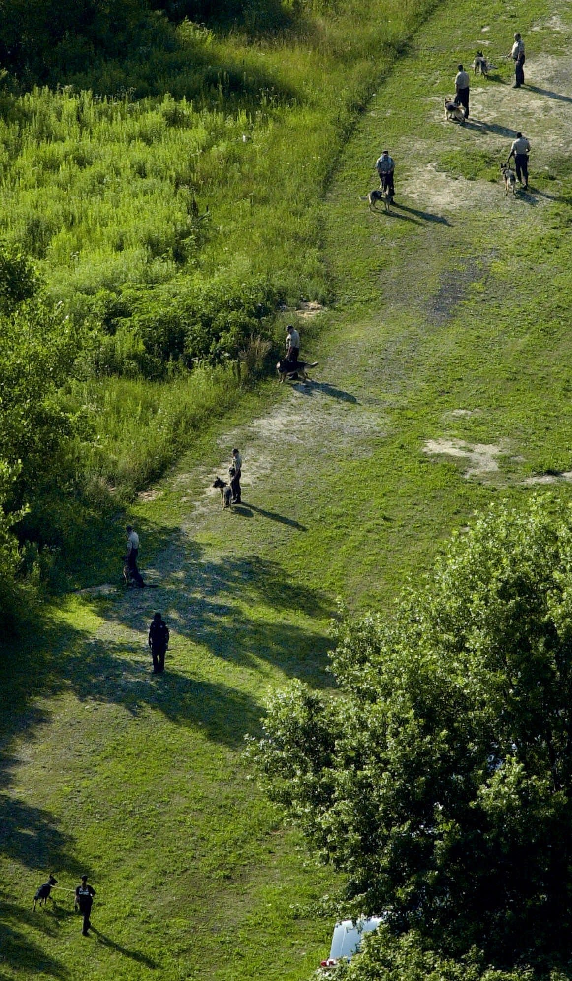 Police with search dogs trained to find buried remains comb the Dan Ryan Woods at 90th Street and Damen Ave., in Chicago on July 10, 2001, in the search for sisters Tionda, 10, and Diamond Bradley, 3, who went missing July 6.