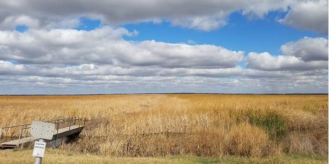 The Cheyenne Bottoms Wildlife Area.