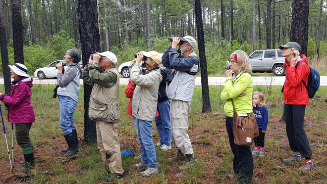 The Croatan National Forest is a big draw for people looking to come to the area, however development's effects on the health of the forest may not be so positive.