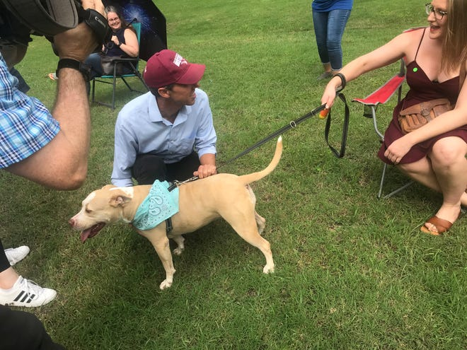Former U.S. Congressman Beto O'Rourke pets an attendee's dog before a rally on Wednesday at Getzendaner Park in Waxahachie. The event, promoted by O'Rourke's Powered by People voter-registration organization, drew a crowd of about 200 people.