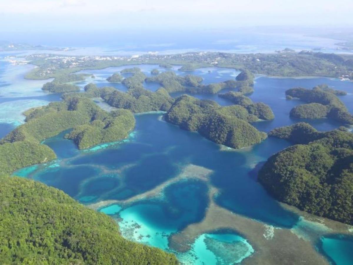 Aerial view of Nikko Bay (Ngermid Bay), Palau.