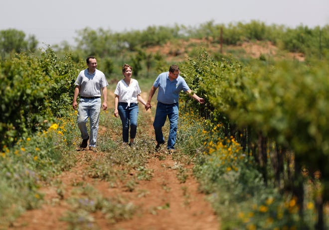 From left, Shane Williams and his parents Shawn and Kirk Williams walk down a row in one of their fields at the Williams Ranch Vineyard in Yoakum County, Tuesday June 8, 2021.
