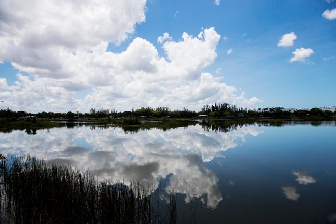 Water quality impairment of Florida's waters is widespread and increasing.