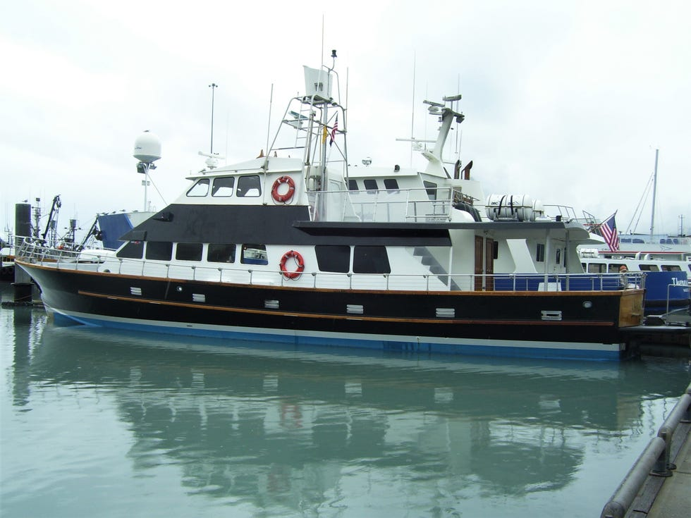 Get up close with glacier and seals on the Lu-Lu Belle.