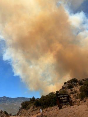 The Flats Fire burns in the San Bernardino National Forest on Sunday, June 13, 2021.