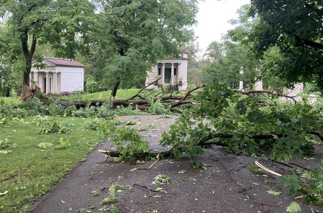 Large trees were uprooted in the historic Allegheny Cemetery during a recent storm.