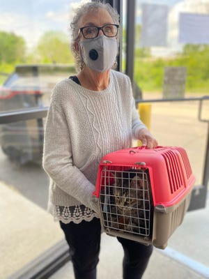 Blanche Thorson of Tecumseh, who adopted Lucy, the longest-tenured feline resident at the Lenawee Humane Society, is pictured. It has been claimed that pets who were adopted during the coronavirus pandemic are now being returned more than ever. However, research is actually showing the opposite.