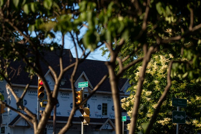Cars drive on North Humboldt Boulevard on Sunday, June 13, 2021. The trees along Humboldt Boulevard may be taken down due to a construction project that aims to replace North Humboldt Boulevard from East North Avenue to East Keefe Avenue. Construction is slated to begin in 2022.
