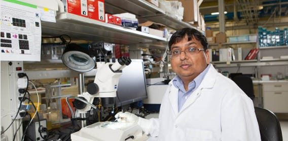 A lab photo of Kamesh Surendran, Ph.D.