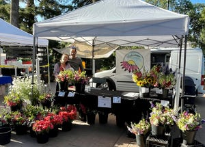 """Flower farmer Monica Drazba, her husband, Tommy Stromberg, and their son, Oskar, started Midsummer Flowers after purchasing a small farm near Vacaville, Calif. They now sell their locally grown flowers weekly at the Vacaville Farmers Market. """"It's been a joy connecting with the community this way,"""" she said."""