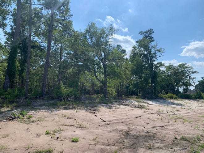 A proposed development could bring more than 250 new apartments to a currently undeveloped lot in northern New Hanover County.