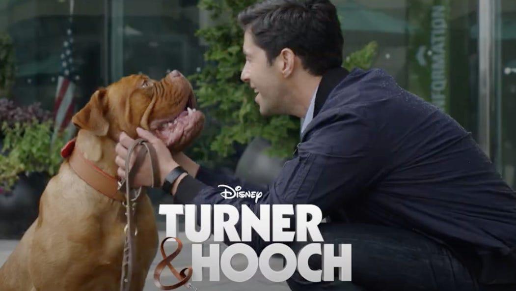 How to watch the 'Turner & Hooch' reboot series on Disney Plus