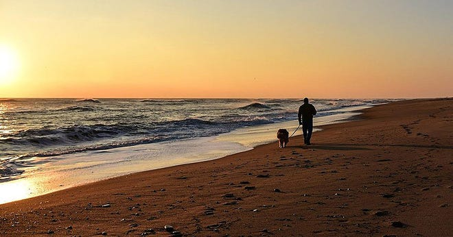 Out for sunrise walkies at Coast Guard Beach in Eastham.
