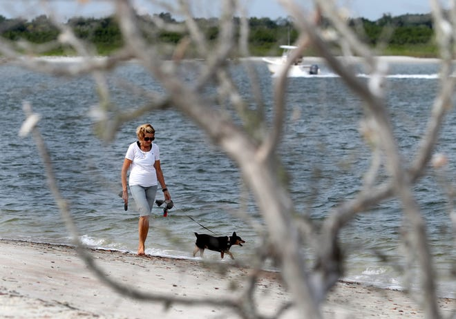 A woman and her dog walk the dog beach at Smyrna Dunes Park, Wednesday June 16, 2021 one of only two dog friendly beaches in Volusia County.