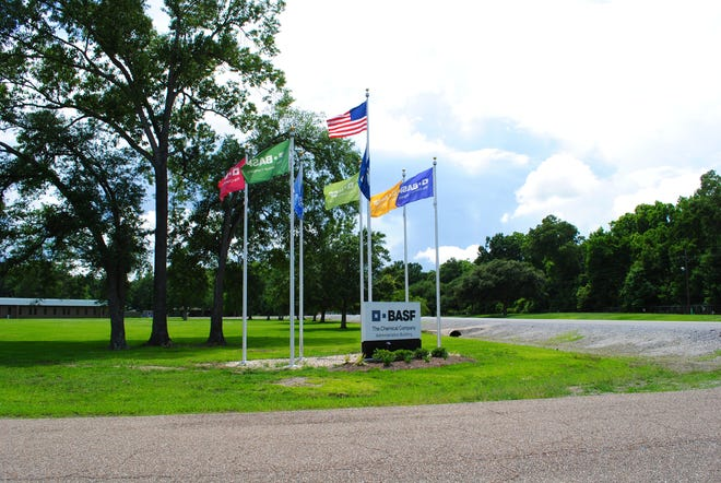 BASF's site in Geismar is hosting 14 summer interns this year.