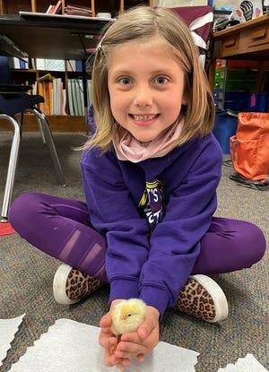 Emmy Burkholder from Mrs. Heeren's first grade class at Eastland holds a chick.