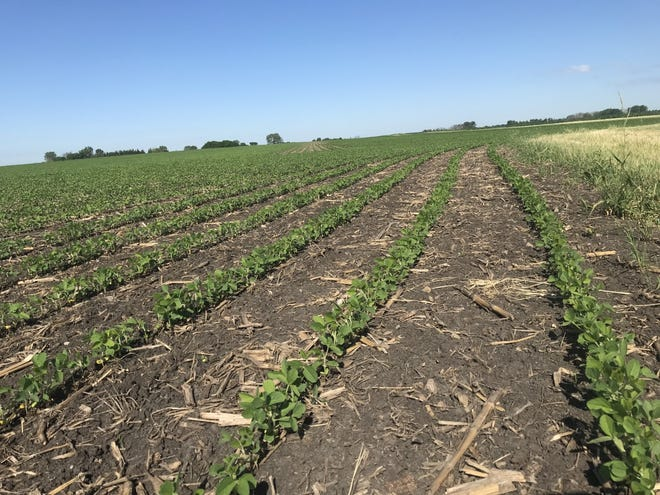Wisconsin farmers who haven't completed their crop acreage reports after planting should reach out to the Farm Service Agency before the July 15 deadline.