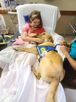 Junie and the other medical dogs at Dell Children's Medical Center have been trained to rest in a bed with patients like Allison.