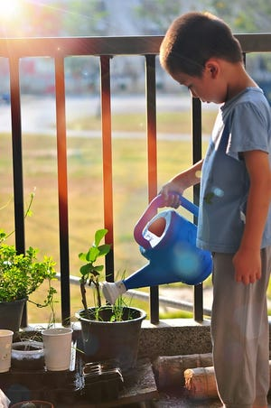 Gardening can be a fun learning experience for kids.