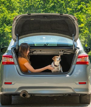 HOLDEN - Amani Gerardi sits with dog Phoebe in the shade of her trunk lid after walking at Eagle Lake Thursday.