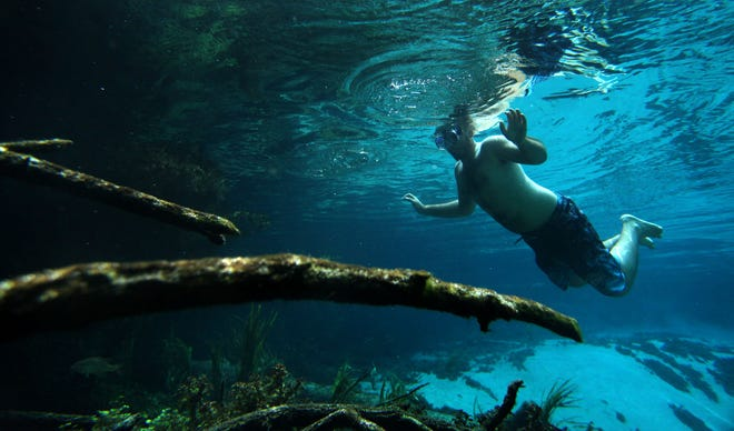 A man floats in the head spring at Ichetucknee Springs State Park near Fort White.