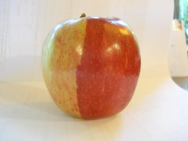 A reader found this unusual apple at an area Ingles.