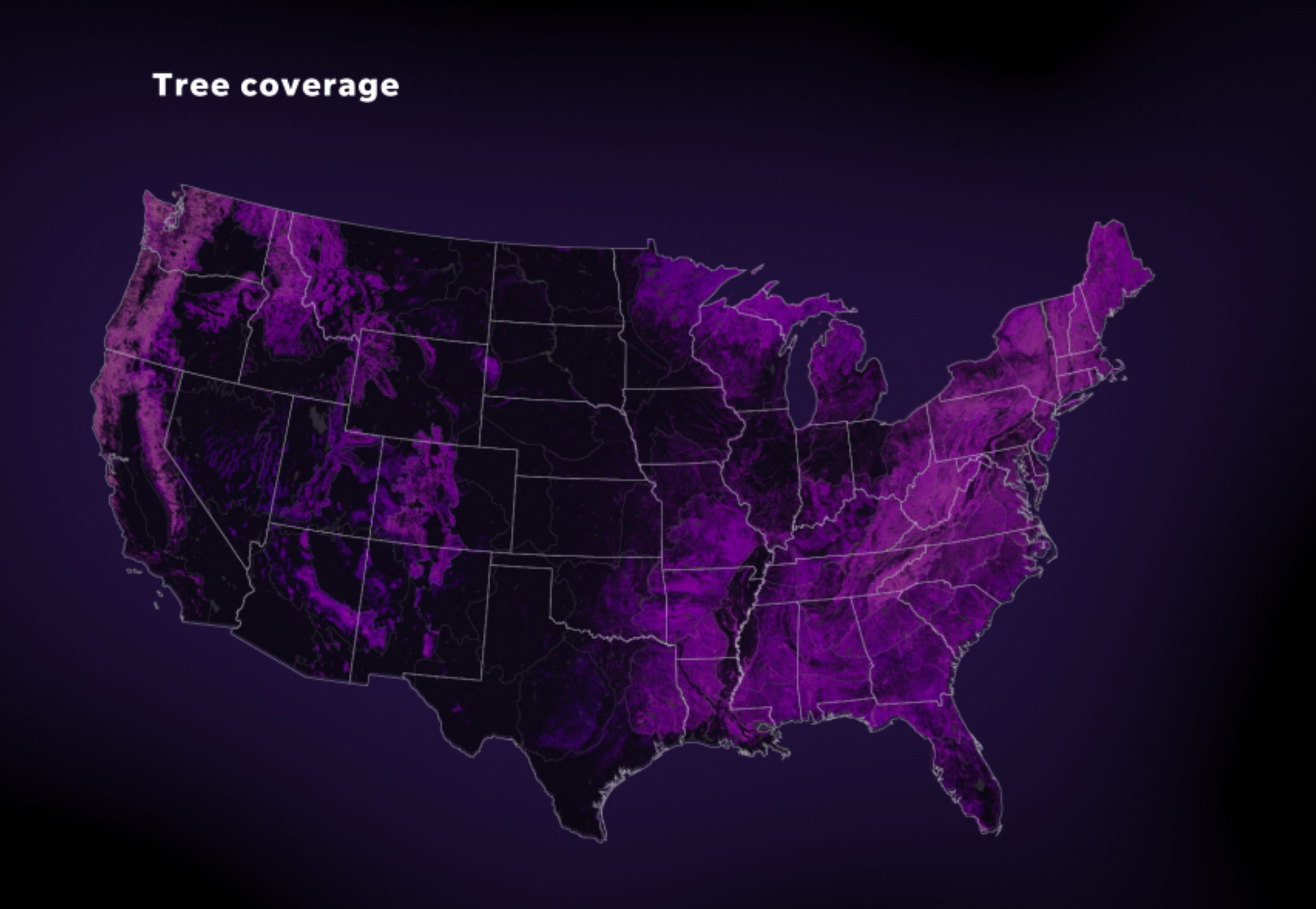 US tree coverage.