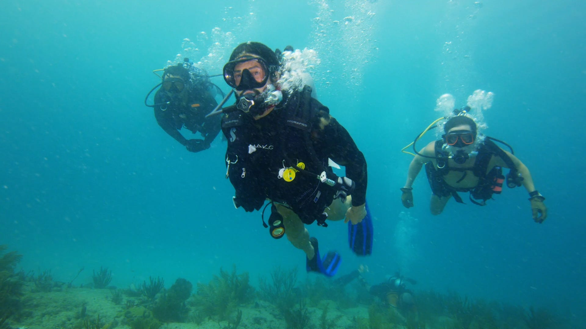 How Navy SEALS and scientists are saving the ocean