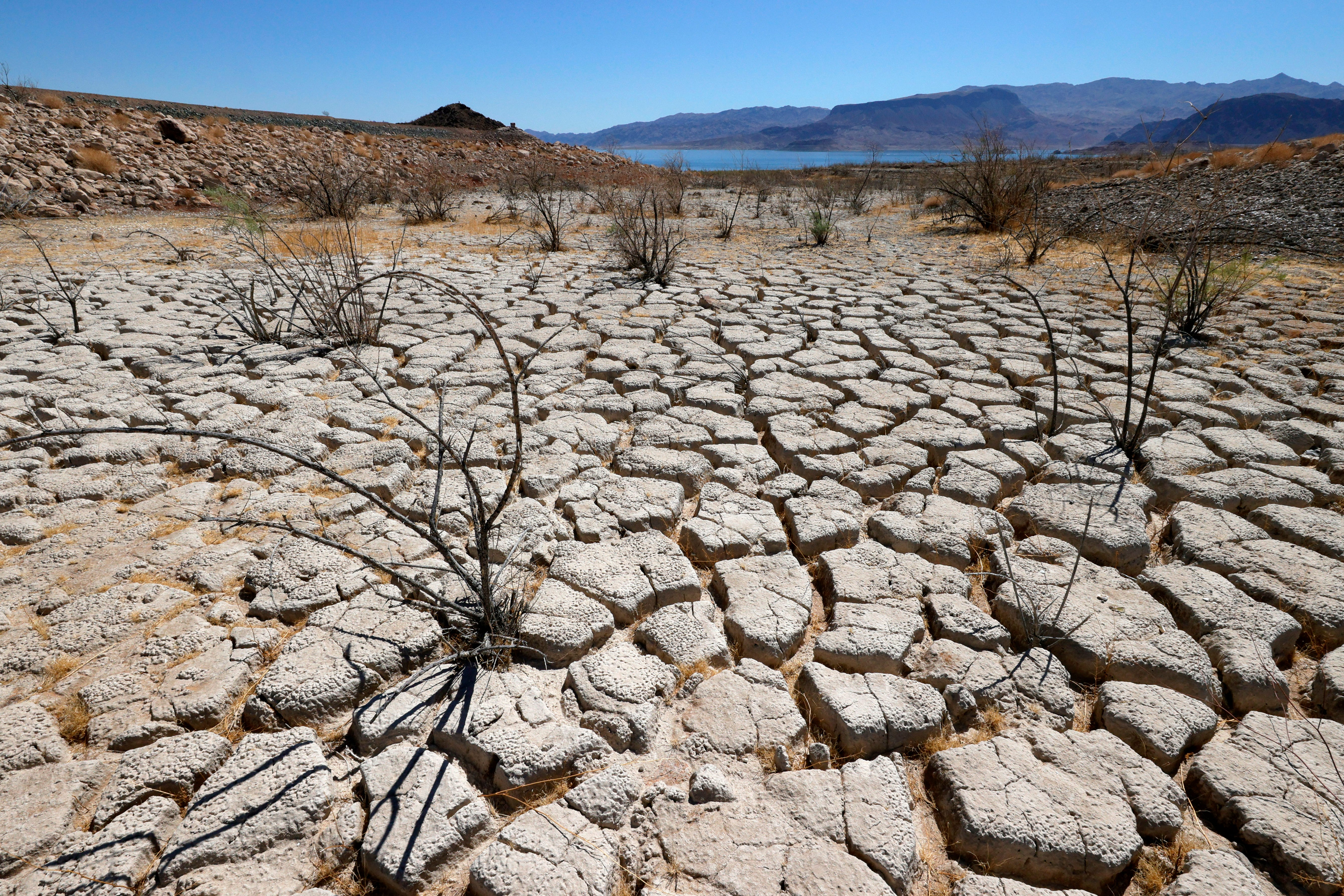 West's drought has no end in sight: 'If we do nothing, it's going to be really bad'