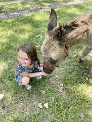 Kids who attended the first Wacky Wednesday of the year at Crawford County Historical Museum on June 16 got to meet Pokey the donkey.