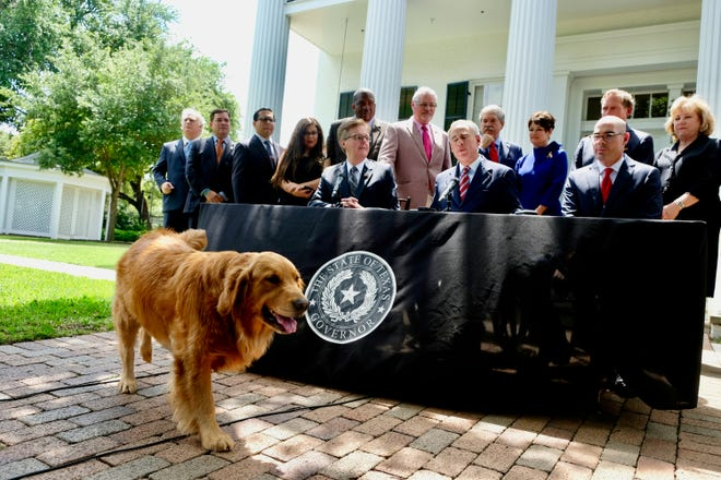 Pancake, Gov. Greg Abbott's dog, makes guest appearance at Governor's Mansion news conference on Thursday, May 23, 2019. KEN HERMAN/American-Statesman.