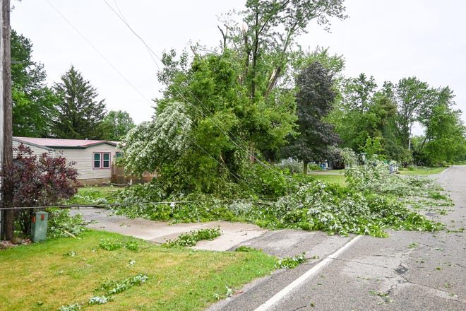 Downed trees pulled down power lines at the trailer park on Southern Road at Angola Road in Kinderhook Township.